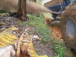 Espalhador de calcário e fertilizante
